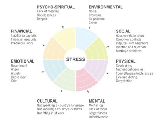 Como o trauma é diferente do estresse?
