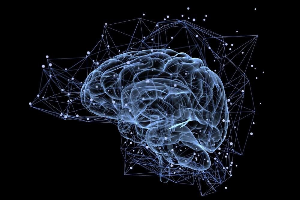 A Neurogênese no Centro de Processamento das Emoções do Cérebro